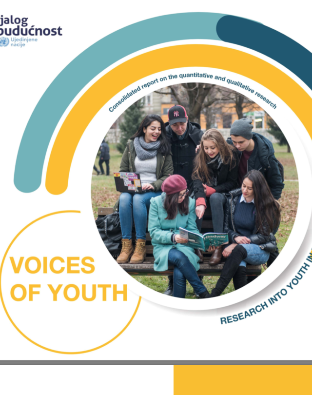Voices of Youth - Consolidated report on the quantitative and qualitative research
